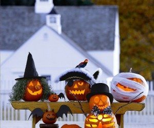 100 Pumpkin Decorating Ideas