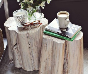 11 DIY Tree Stump Dcor Ideas that Usher on a Budget