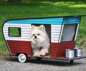 15 Adorable Dog Houses