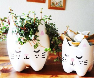 15 DIY Decor Designs for a Cat Themed Home