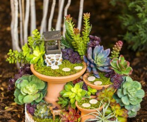 15 DIY Fairy Gardens To Create This Spring