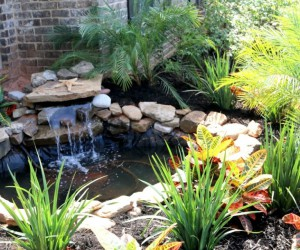 15 Lovely DIY Pond Designs