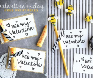 20 Fun and Easy DIY Valentines Day Cards to Express Your Undying Love