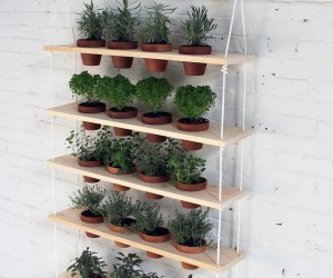 24 DIY Herb Gardens To Practice Your Green Thumb With