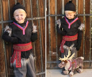 24 DIY Toddler Boy Costumes That Rock