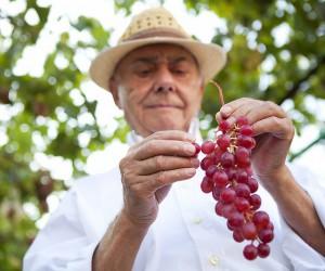 25 Benefits of Drinking Wine