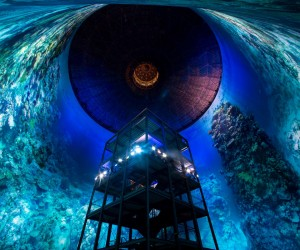 360 Panorama of the Great Barrier Reef at Panometer Leipzig