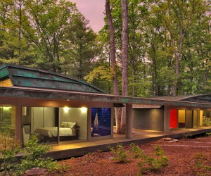 6 Incredible Houses Built Around Trees