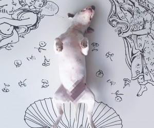 A Bull Terrier  Illustrator Make Beautiful Art Together.
