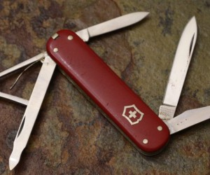 All 18 Pocket Knife Blade Shapes Explained