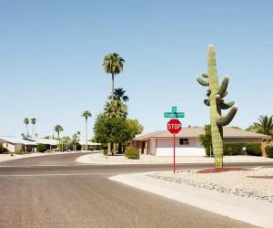 American Landscapes by Josef Hoflehner