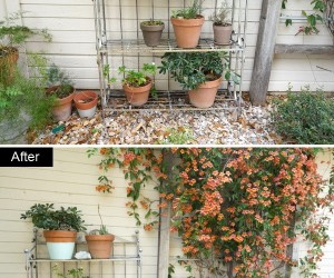An Outdoor Makeover For Spring