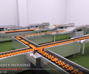 Architectural  Animated Virtual Food Processing Factory video Tour