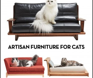 Artisan Furniture for Cats