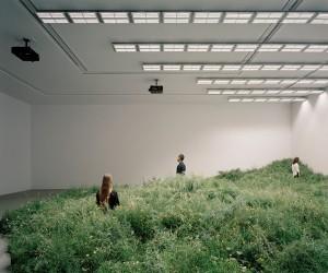 Australian Pavilion At 2018 Venice Architecture Biennale