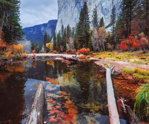 autumn: Beautiful Nature Photography by Glenn Lee Robinson