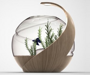 Avo: Self-Cleaning Fish Tank