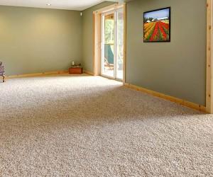 Back 2 New Carpet - Carpet Cleaners Brisbane