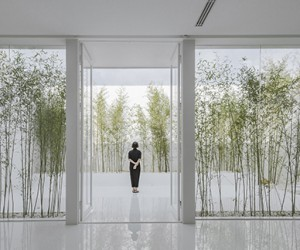Bamboo Forest creates an Oasis atop a busy Mall