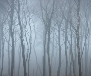 Beautiful and Moody Landscape Photography by Thomas Heaton