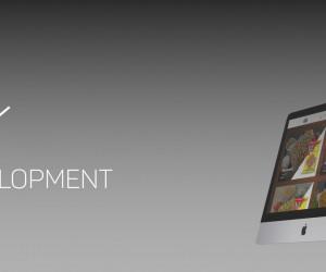 Best Web Development Company in Surat  Make My Online Shop