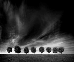 Black and White Landscapes by Alexey Antonov