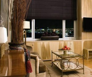 Blinds from Lerner Interiors