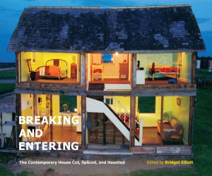 Book Review: Breaking and Entering