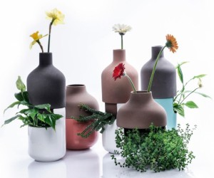Bothles multifunctional vases