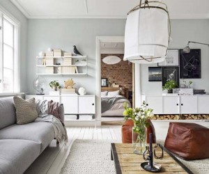 Bright and Compact Swedish Apartment Exhibiting an Efficient Layout