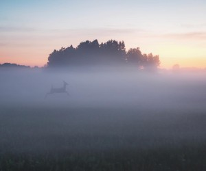Brilliant Landscape Photography in Finland by Sami Takarautio