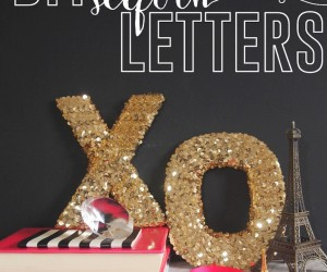 Bring a Little Love  Sparkle Home with Sequins