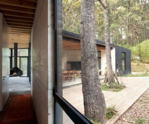Cadaval  Sola-Morales Designs a Y-Shaped House in the Deep Forests of Mexico