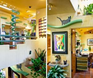 Cat House by Trillium Enterprises