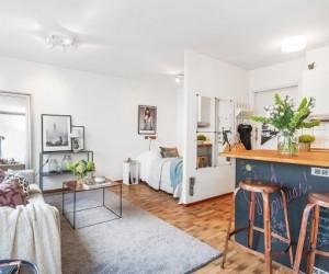 Charming 28 sqm studio in Sweden