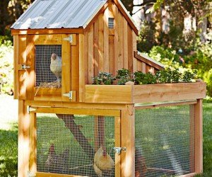 Chicken Coop and Planter by Williams Sonoma