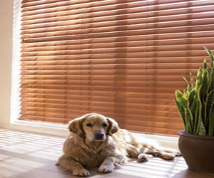 Classic Faux Wood Blinds
