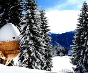 Claudio Beltrame Designs Pinecone-shaped Treehouse in Italian Alps