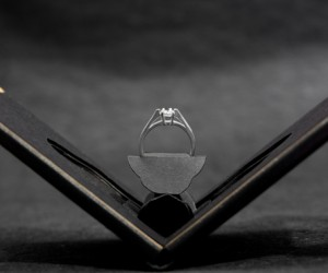 Clifton Flat Engagement Ring Case by Andrew Zo