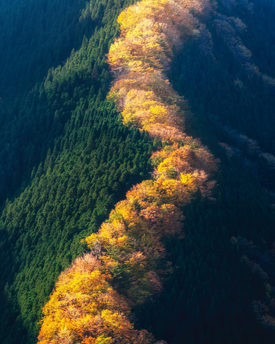 Colorful Autumn In Japan: Landscape Photography By Daisuke