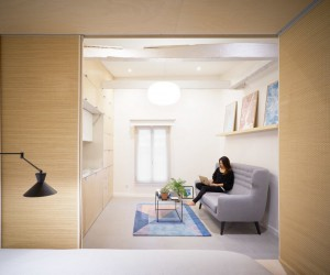 Complete Renovation of a 27 sqm Single Room Duplex in Paris