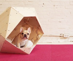 DIY | Contemporary Geometric Doghouse