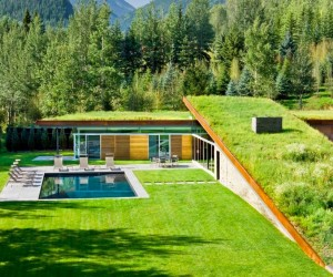 Contemporary house with green roof