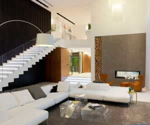 Contemporary Russian Villa Project