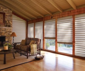 Cordless Lift Vignette Roman Shade by Hunter Douglas
