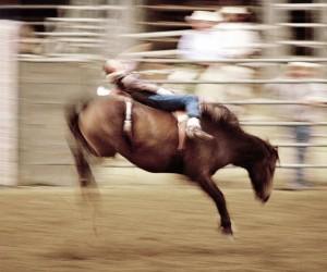 Cowboys by Stefano Galli