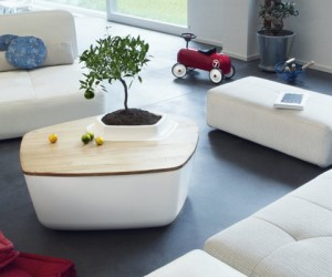 5 Creative Coffee Table w/ Built-In Plants