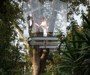 Crystal Treehouse, Mexico City, Mexico  Gerardo Broissin