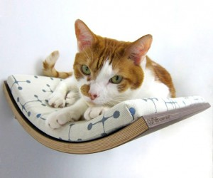 Curve: Wall-Mounted Pet Bed