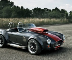 Custom Cobra | Weineck Engineering